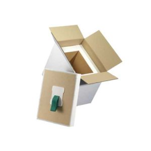 Cryopak CryoBox